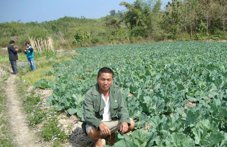 A proud farmer with his cabbage field